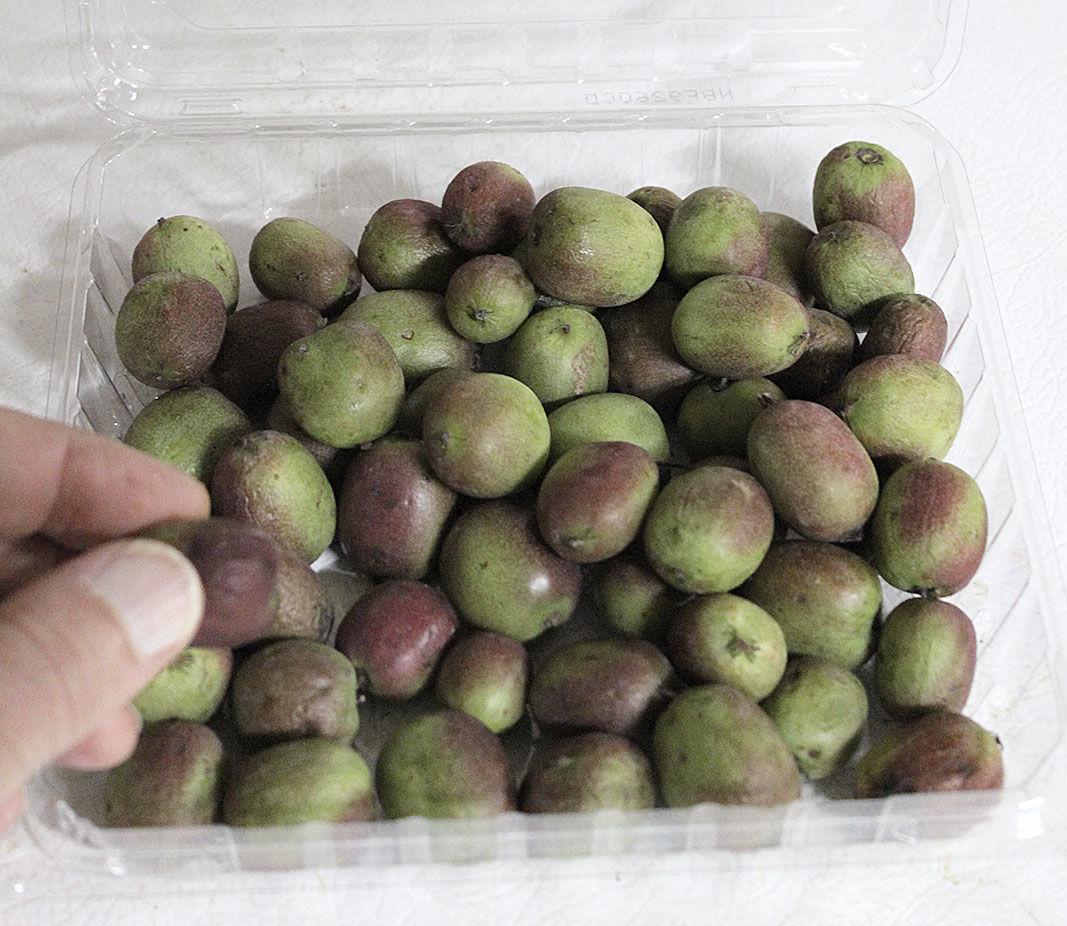 Kiwi berries 3