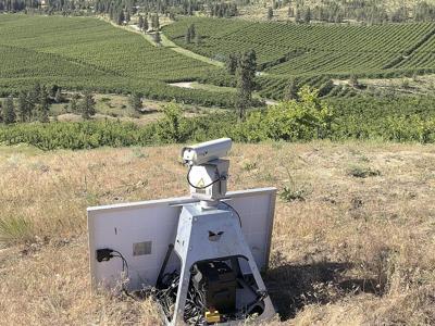 Laser hazer keeps birds at bay in orchards
