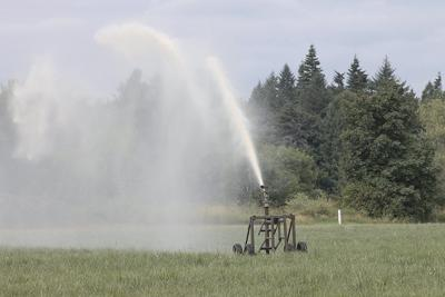 Ecology curtails water rights as Western Washington dries