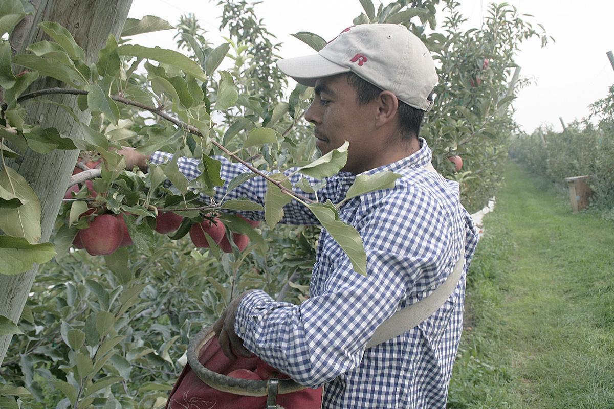 Farm labor bill