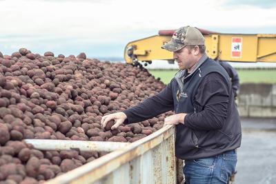 Congress mulls project to flood Washington farmland