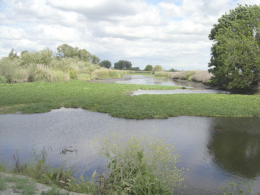 Groups argue proposal would rescind water rights
