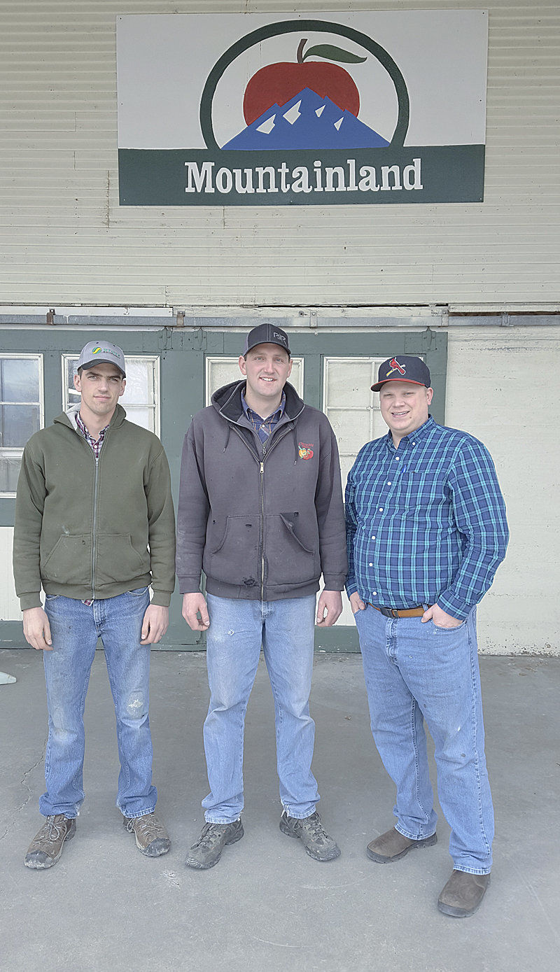 Family orchard, co-op packing house work together