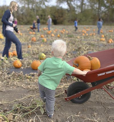 Pumpkin palooza fun coming to the grounds of the yardley united.