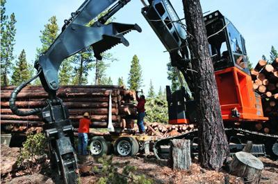 Central Oregon logging