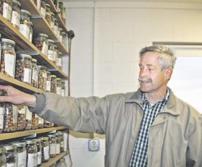 OSU: ban will hamper research