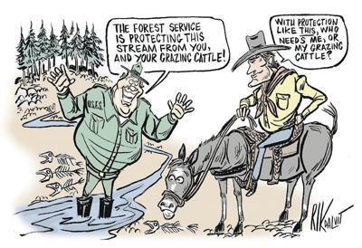 Creek solution worse than 'problem'