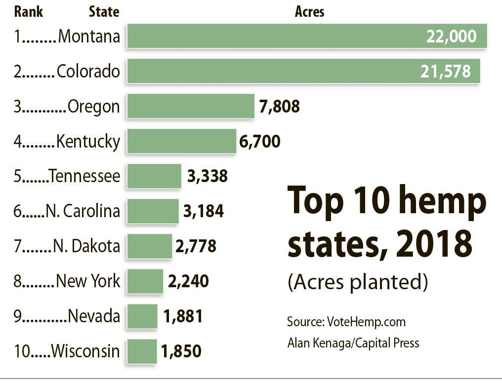 Hemp gains ground among farmers | Profit Center