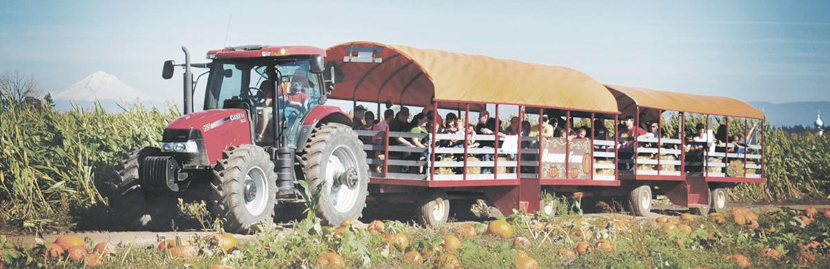 Agritourism on the rise