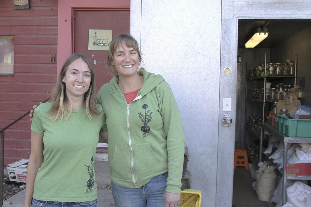 Seed cooperative grows in a regional-by-design niche