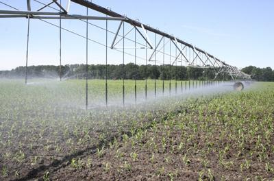 Agricultural water scrutiny increases in Oregon