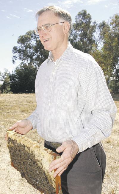 UC-Davis bee expert to receive alumni award