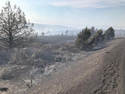 BLM treating burned land