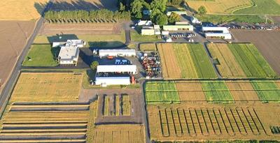 Pendleton ag station to expand its research