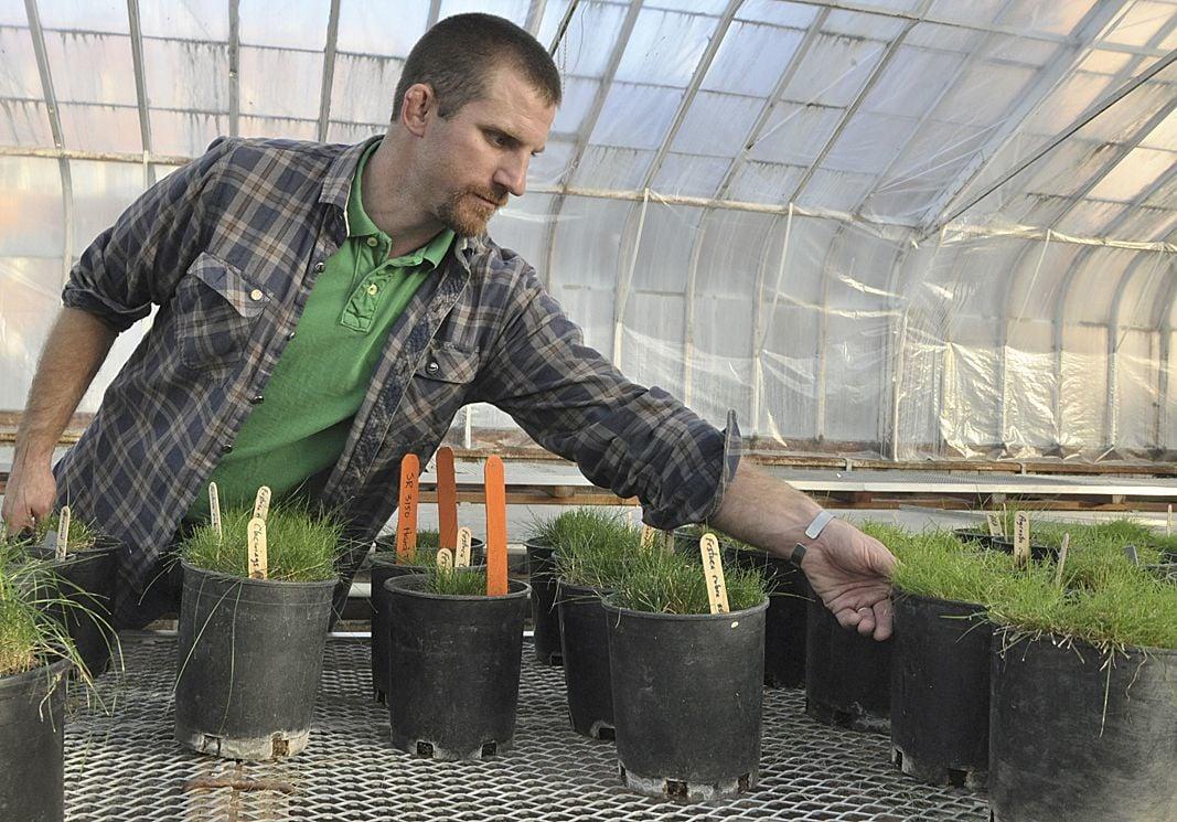 Turfgrass specialist makes lawns, sports fields greener