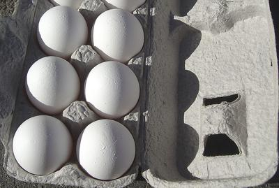 California shell egg prices