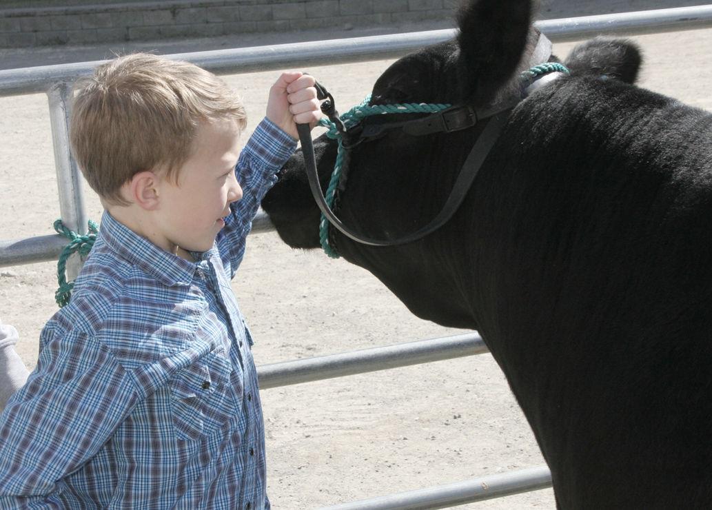 Spokane Junior Livestock 2