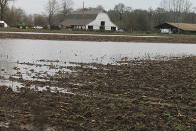 Rain ends drought in Western Washington, federal monitors say