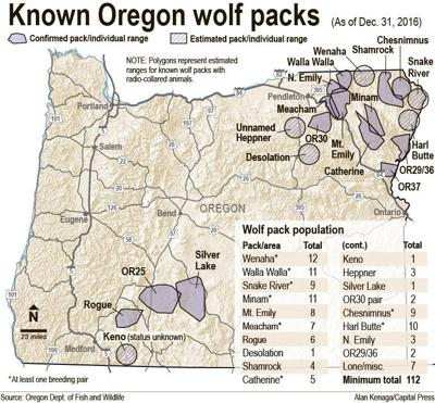More wolf packs expected in southwest Oregon