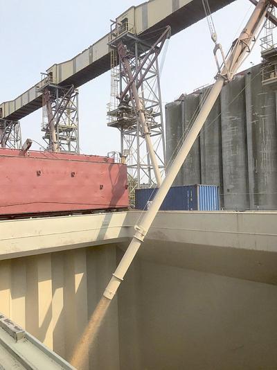 PNW wheat to fight hunger in Yemen