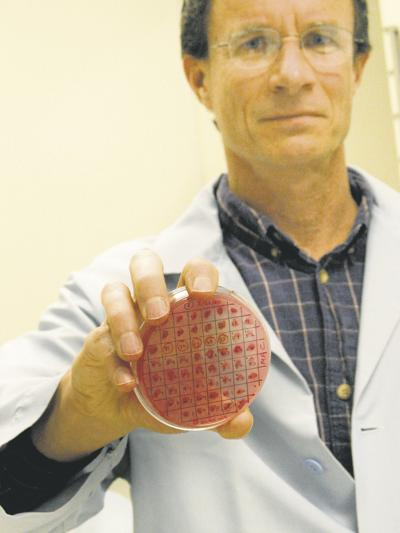 Researcher gets $1 million to study E. coli in cattle