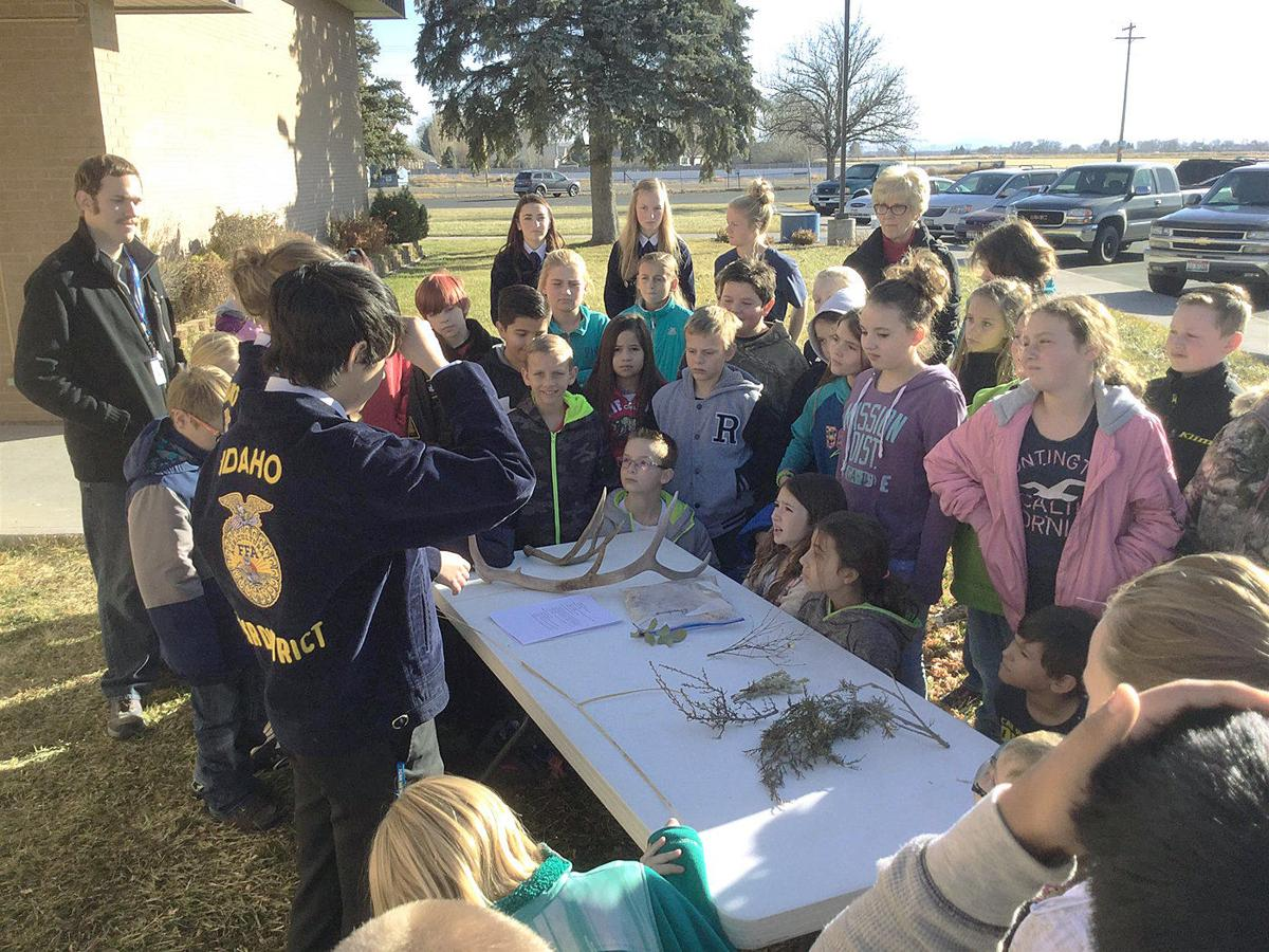 Two Idaho FFA chapters tapped for highest honor
