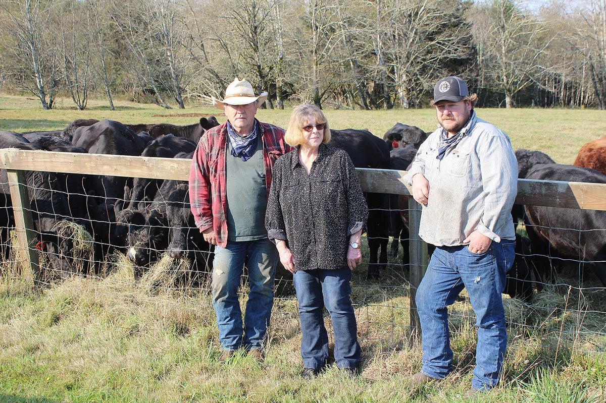 Schooner Creek Cattle Co.