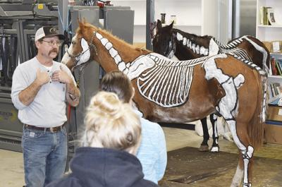 Blue Mountain Community College to offer veterinary technician program through agreement with Colby Community College