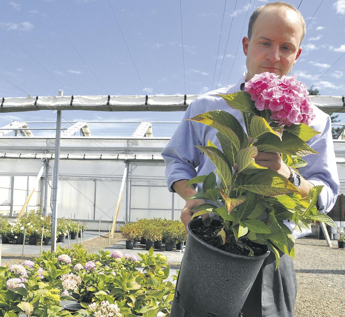 System helps nurseries forecast sales