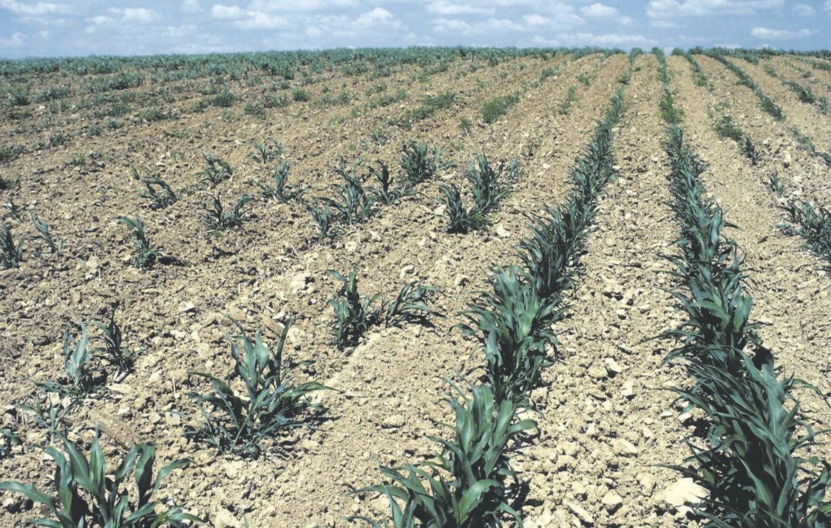 Overwhelmed farmers seek stress relief