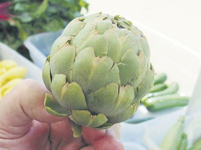 Artichoke season at its peak in California