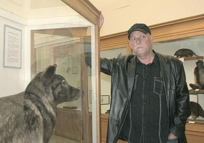Ranchers question value of wolf study