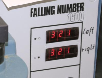 Falling number test