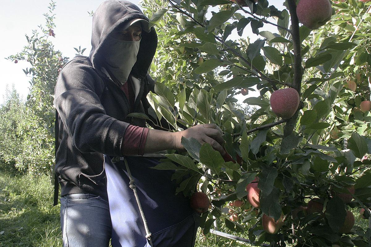 Apple wage suit