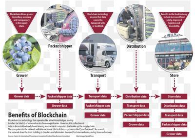 Blockchain flow chart
