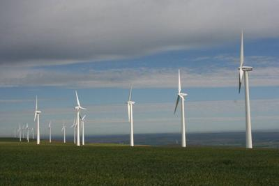 Wind generators win in dispute with BPA