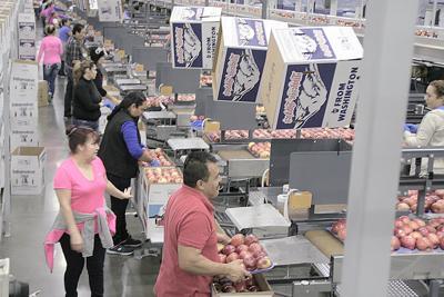 Mexico may revisit apple tariffs
