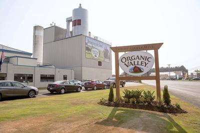 Organic Valley discharge
