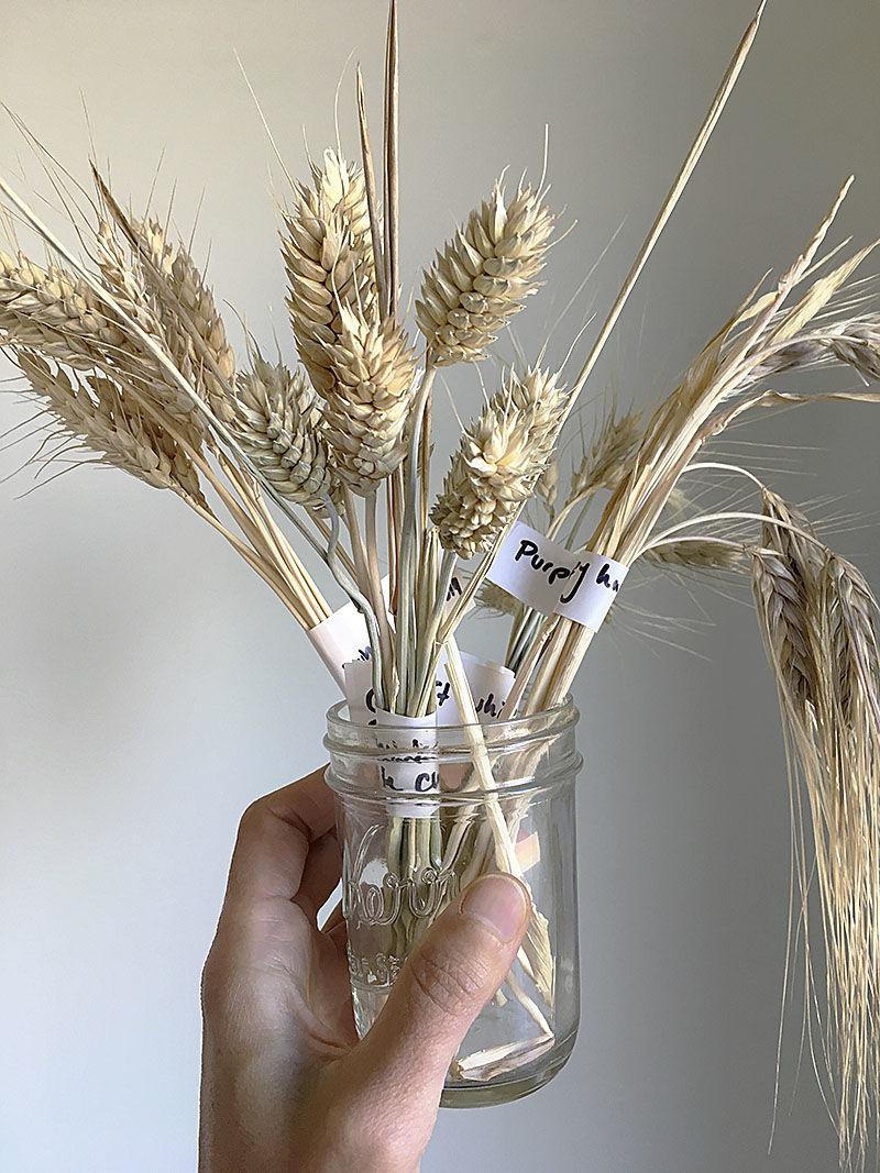 Hillside Grain