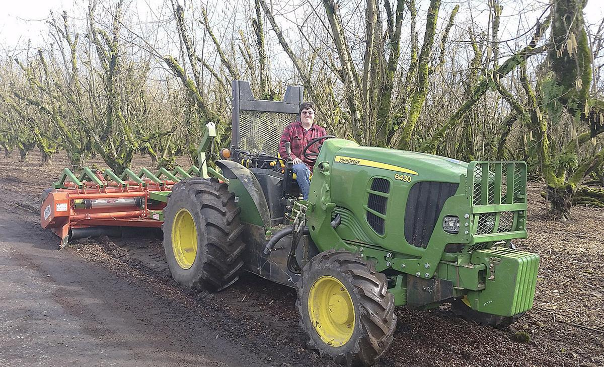 Farmers experiment with chipping hazelnut brush | Orchards