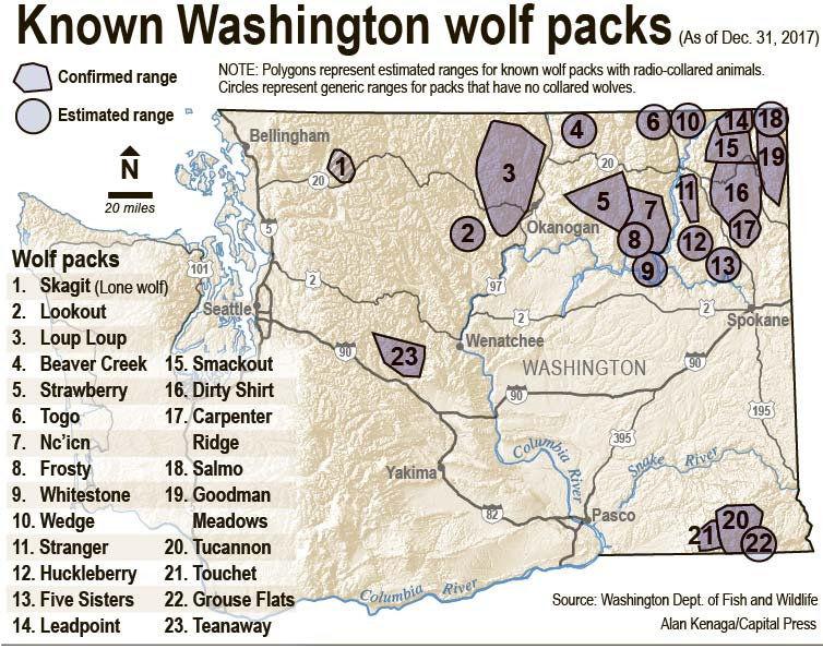 Wolves stick to northeast Washington