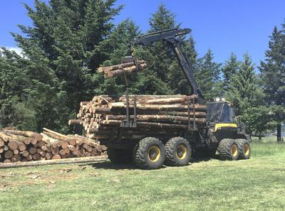 Demonstration shows modern forestry advances