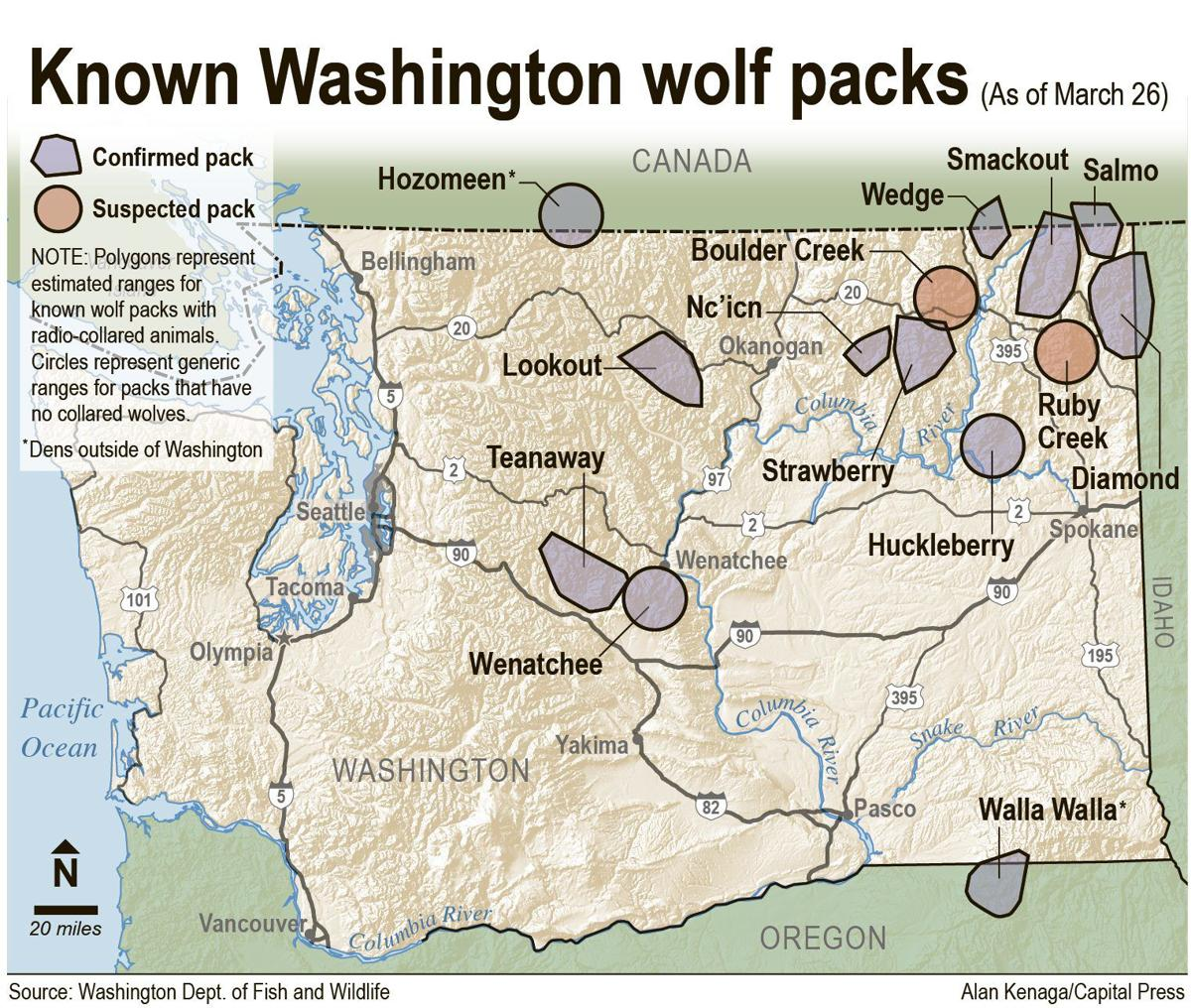 WSU to study wolf, cattle behavior