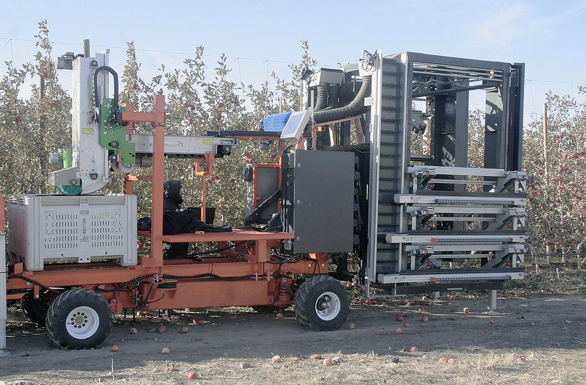 CNTR robotic apple picker 6