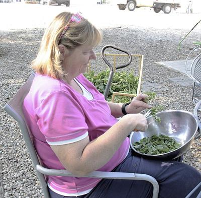 Farm increases public involvement with classes, hosted dinners