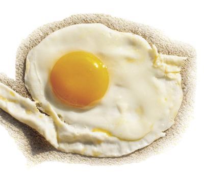 Egg bill union silent