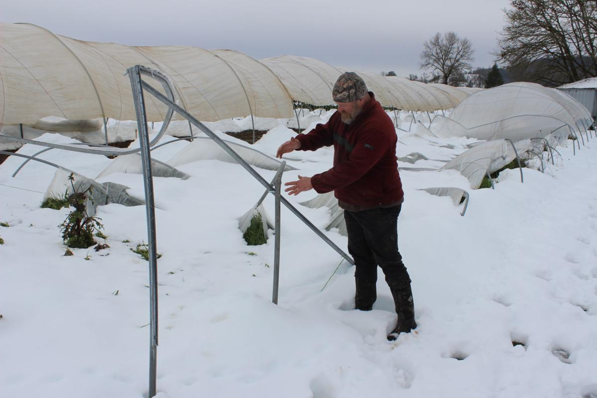Snow collapses greenhouse