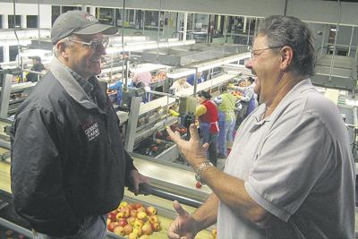 Chile beckons fruit firms