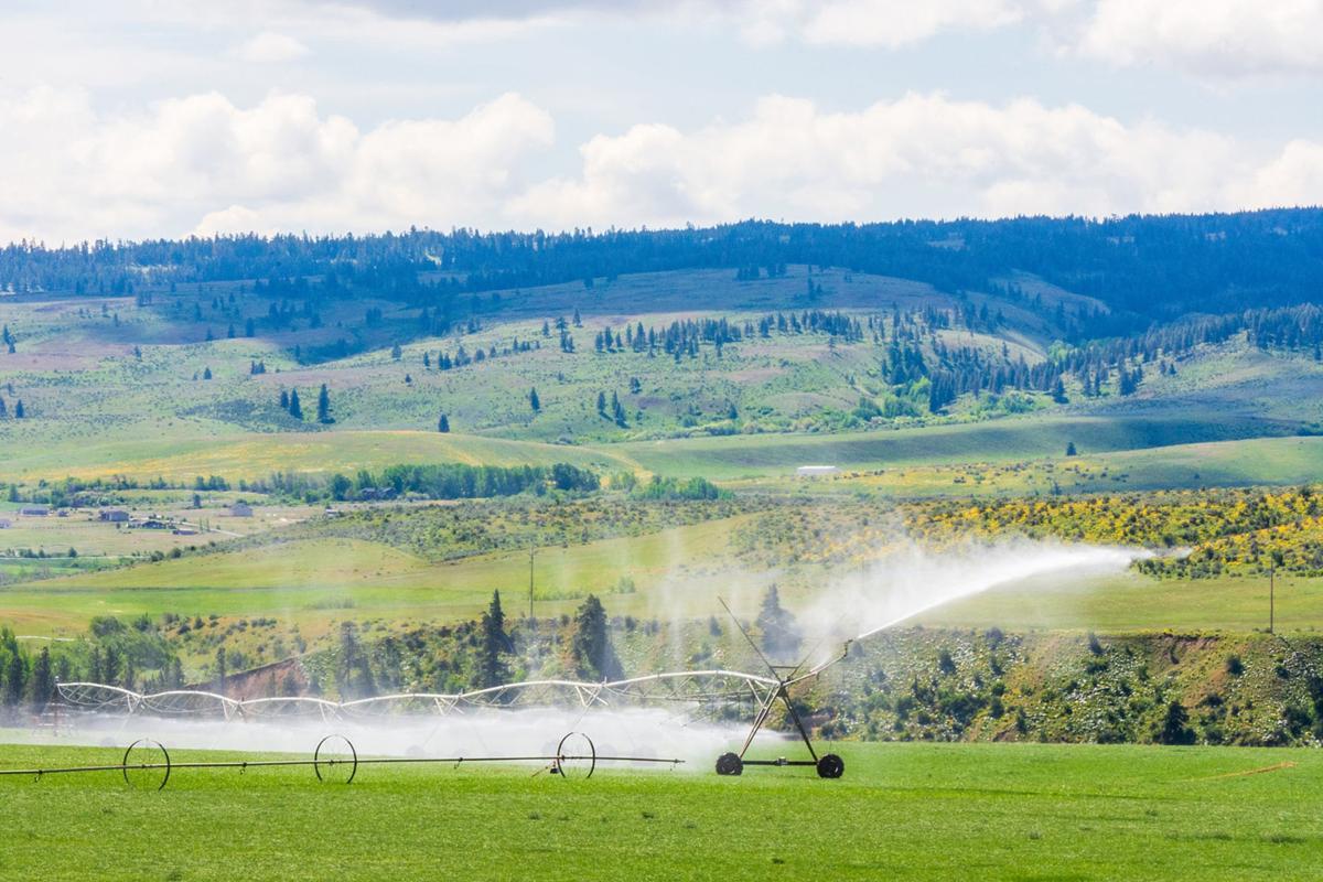 Western Water Market Irrigation