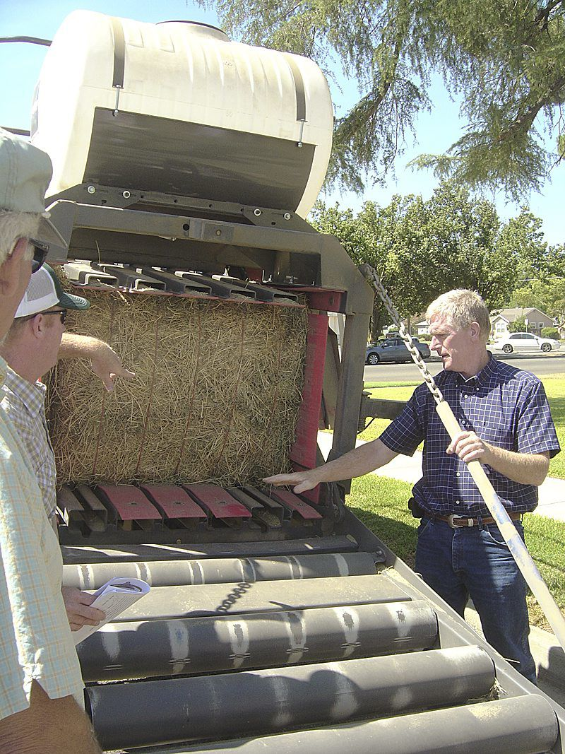California growers converting rice straw to cattle feed
